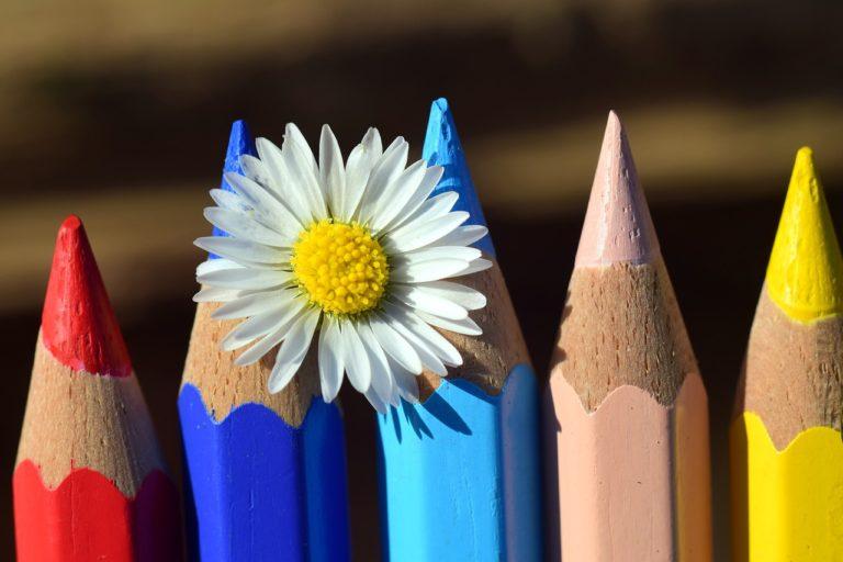 Coloured pencils, flowers, preparing to write CV